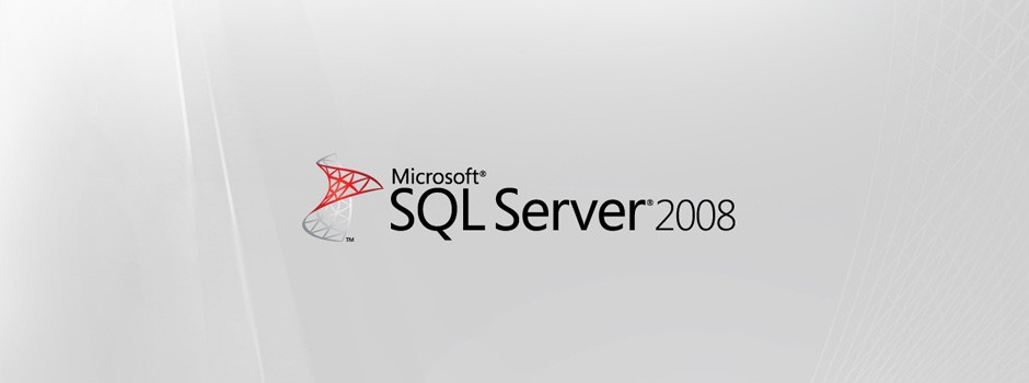 Microsoft SQL 2008 Database Server