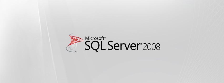 Microsoft SQL 2008 Database Server